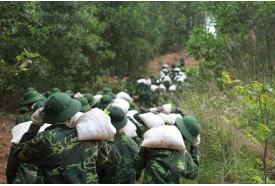 Team Building tại Đà lạt hành quân giữa rừng thông xanh